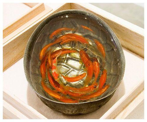Goldfish-2-4